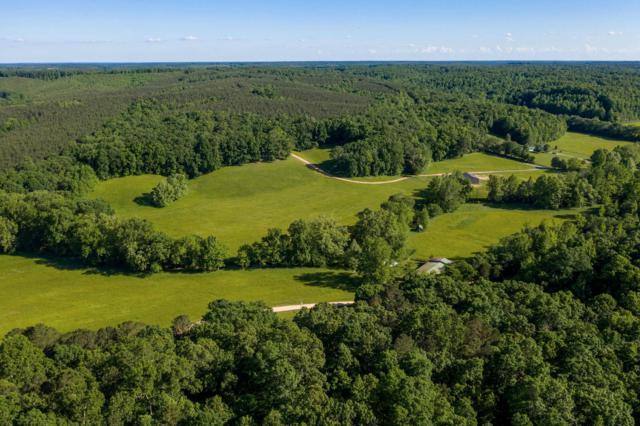 1172 Wades Branch Rd, Centerville, TN 37033 (MLS #RTC2045459) :: Village Real Estate