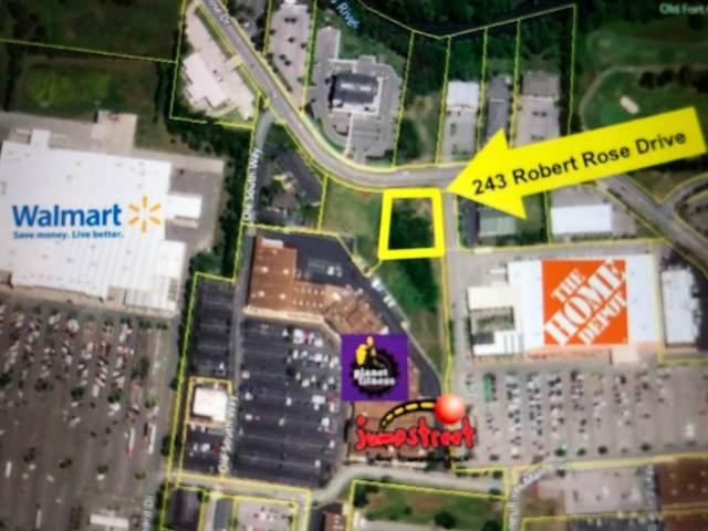 243 Robert Rose Dr, Murfreesboro, TN 37129 (MLS #RTC2045852) :: Village Real Estate
