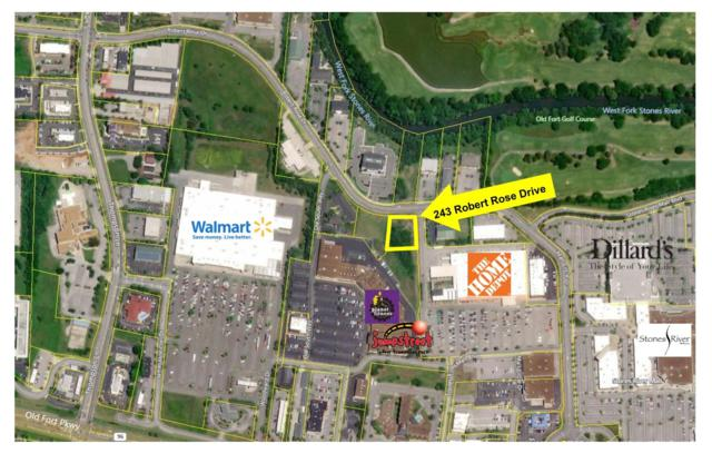 243 Robert Rose Dr, Murfreesboro, TN 37129 (MLS #RTC2045852) :: Adcock & Co. Real Estate