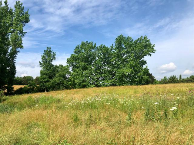 0 N George Rd, Flintville, TN 37335 (MLS #RTC2045918) :: Maples Realty and Auction Co.