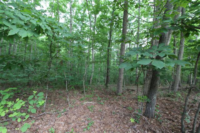 0 Old Sr 48, Centerville, TN 37033 (MLS #RTC2047498) :: Berkshire Hathaway HomeServices Woodmont Realty