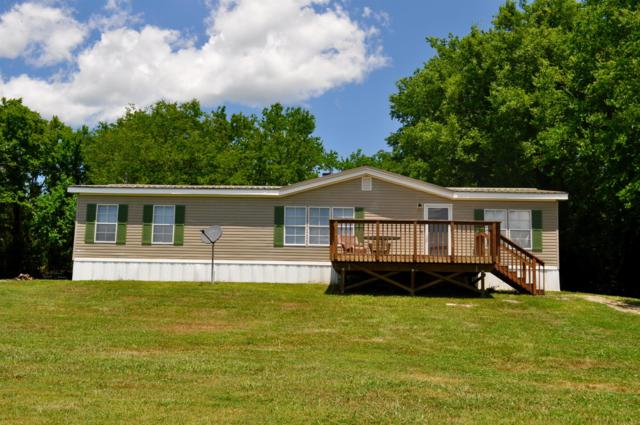 401 Old Elkton Pike, Fayetteville, TN 37334 (MLS #RTC2047610) :: CityLiving Group