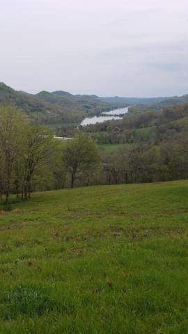 0 Defeated Creek Hwy, Pleasant Shade, TN 37145 (MLS #RTC2047691) :: Village Real Estate