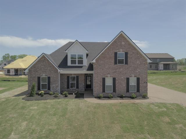 905 Paislee Raine Drive, Smyrna, TN 37167 (MLS #RTC2048248) :: CityLiving Group