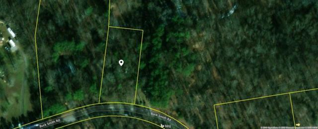 2101 Buck Smith Rd, Palmyra, TN 37142 (MLS #RTC2048798) :: Christian Black Team