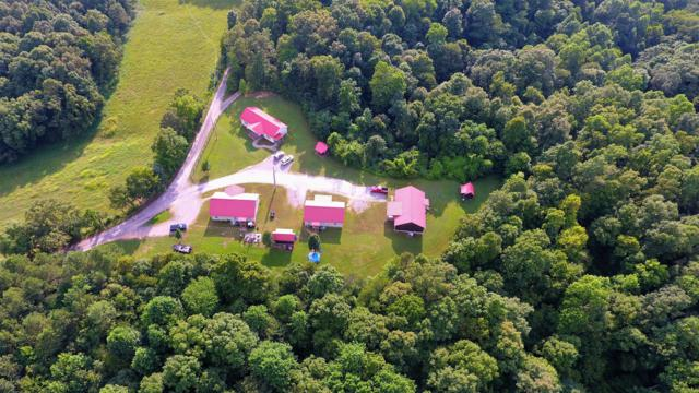 118 N Hughes Ln, Erin, TN 37061 (MLS #RTC2050005) :: CityLiving Group
