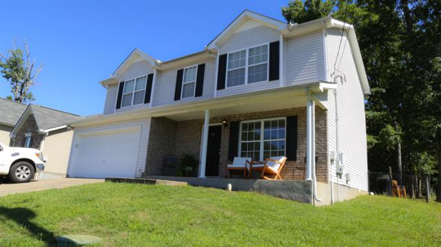 317 Niagra Ln, Murfreesboro, TN 37129 (MLS #RTC2050103) :: Village Real Estate