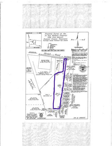 170 Shuab Rd, Portland, TN 37148 (MLS #RTC2051098) :: Village Real Estate