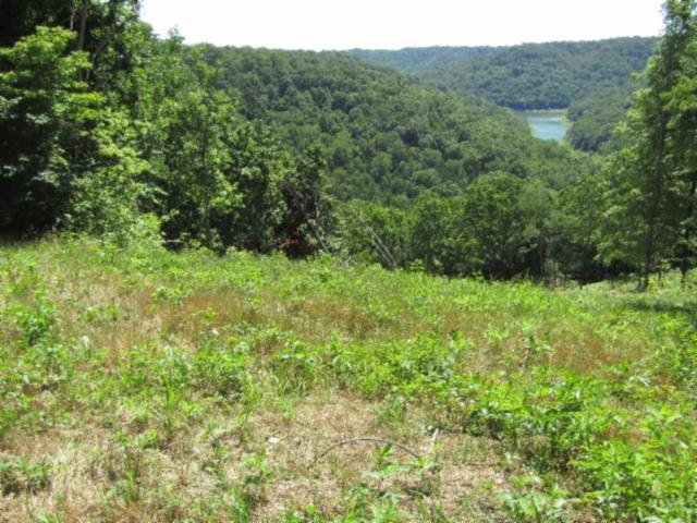 2 .31Ac S Hunting Landing, Smithville, TN 37166 (MLS #RTC2051279) :: Berkshire Hathaway HomeServices Woodmont Realty