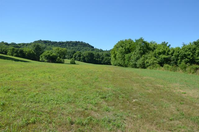 1 Alexandria To Dismal Rd, Liberty, TN 37095 (MLS #RTC2051357) :: REMAX Elite