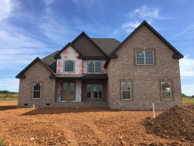34 Hartley Hills(Boyer Farms), Clarksville, TN 37043 (MLS #RTC2051391) :: Christian Black Team