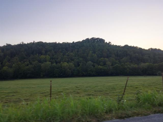 0 Salt Lick Creek Rd, Gainesboro, TN 38562 (MLS #RTC2051641) :: The Easling Team at Keller Williams Realty