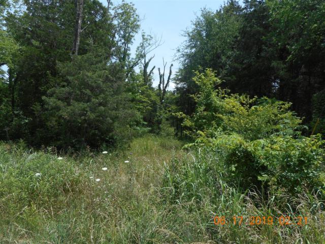 232 Sunnyside Dr, Chapel Hill, TN 37034 (MLS #RTC2052041) :: CityLiving Group