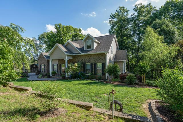 2821 Highway 12 N, Chapmansboro, TN 37035 (MLS #RTC2052147) :: The Milam Group at Fridrich & Clark Realty