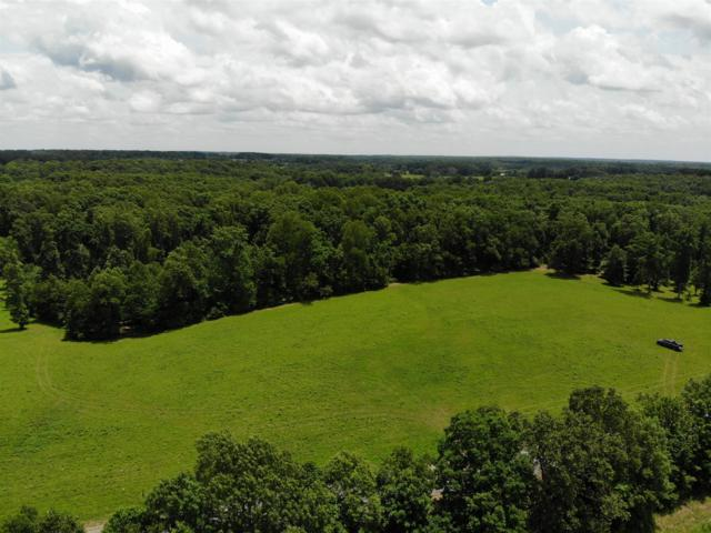 2 Younger Creek Rd., Primm Springs, TN 38476 (MLS #RTC2052272) :: RE/MAX Choice Properties