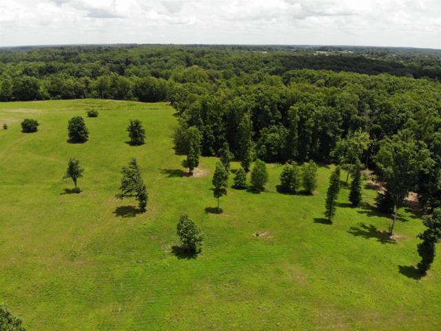 3 Younger Creek Rd., Primm Springs, TN 38476 (MLS #RTC2052288) :: RE/MAX Choice Properties
