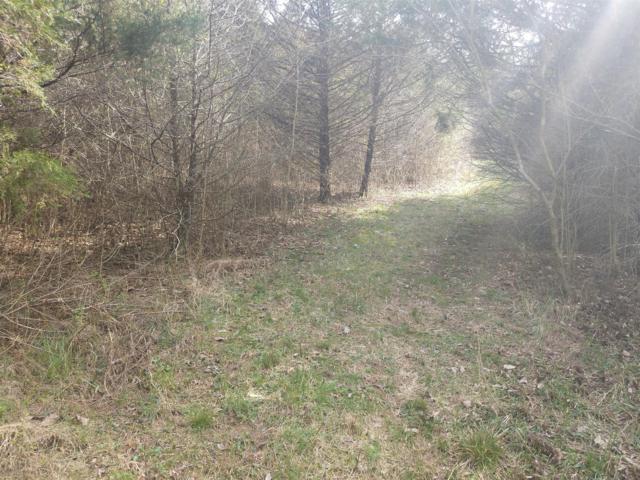 4 Dry Fork Rd, Brush Creek, TN 38547 (MLS #RTC2052298) :: RE/MAX Choice Properties