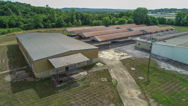 489 Bennett Dr, Pulaski, TN 38478 (MLS #RTC2053103) :: Christian Black Team