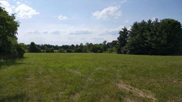 1 Cedar Grove Rd, Chapel Hill, TN 37034 (MLS #RTC2053474) :: Village Real Estate