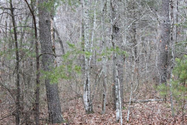 1 Timberwood Trace, Monteagle, TN 37356 (MLS #RTC2053638) :: REMAX Elite