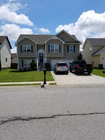 3795 Suiter Rd, Clarksville, TN 37040 (MLS #RTC2053676) :: Cory Real Estate Services
