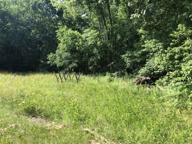 0 Brushy Rd, Centerville, TN 37033 (MLS #RTC2054109) :: Team Wilson Real Estate Partners