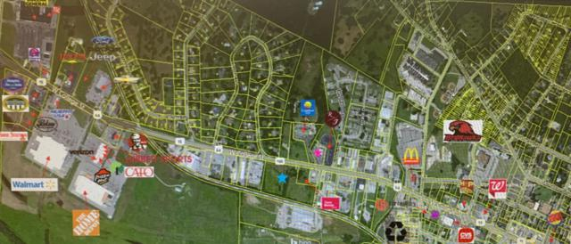 735 W College St, Pulaski, TN 38478 (MLS #RTC2054308) :: Village Real Estate
