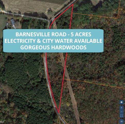 0 Barnesville Road, Summertown, TN 38483 (MLS #RTC2054416) :: REMAX Elite