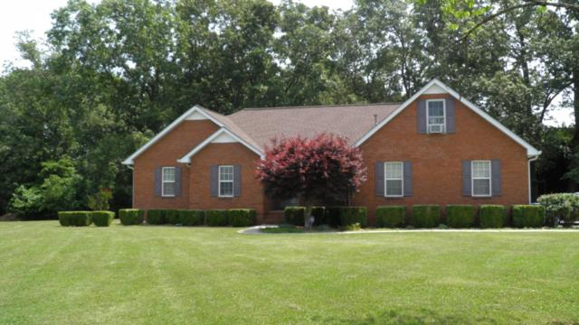 46 Hunt Creek Ct, Manchester, TN 37355 (MLS #RTC2054424) :: REMAX Elite