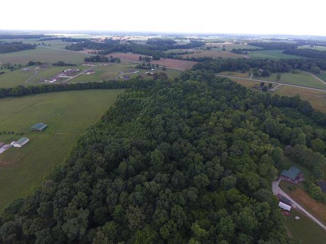 0 Old Hillsboro Hwy, Hillsboro, TN 37342 (MLS #RTC2054434) :: Village Real Estate