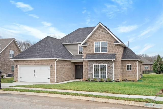 20 Village Terrace, Clarksville, TN 37043 (MLS #RTC2054473) :: CityLiving Group