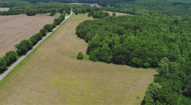 0 Old Furnace Rd, Decaturville, TN 38329 (MLS #RTC2054613) :: Team Wilson Real Estate Partners