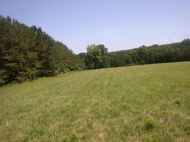 0 Central Turnpike, Summertown, TN 38483 (MLS #RTC2055200) :: CityLiving Group