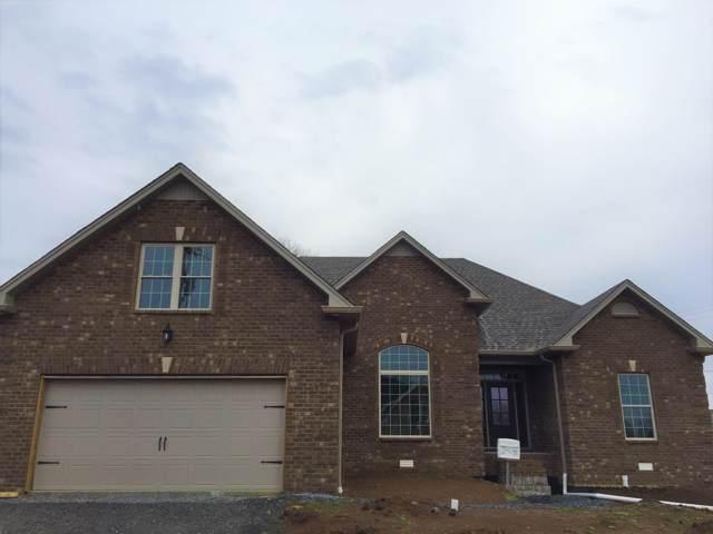 399 Mya Marie Drive, Gallatin, TN 37066 (MLS #RTC2055221) :: Berkshire Hathaway HomeServices Woodmont Realty
