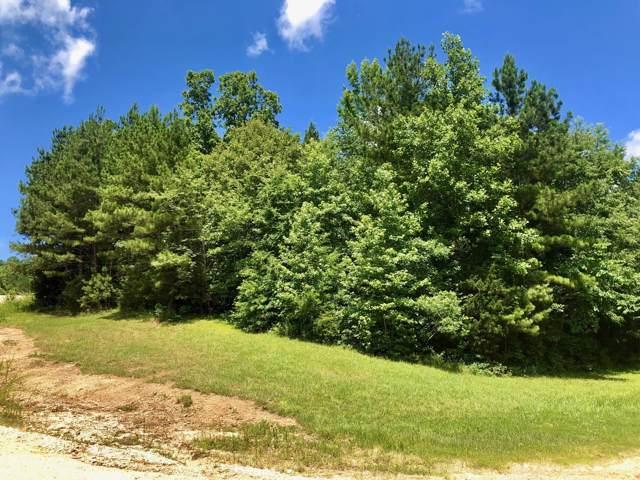 0 Beech Ridge Rd, Parsons, TN 38363 (MLS #RTC2056181) :: REMAX Elite