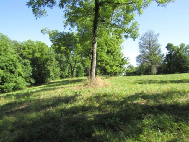 5508 Lot 1 Spencer Hwy, Sparta, TN 38583 (MLS #RTC2057765) :: Village Real Estate