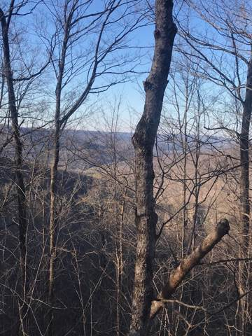 0 Myers Town Rd, Beersheba Springs, TN 37305 (MLS #RTC2058811) :: Village Real Estate