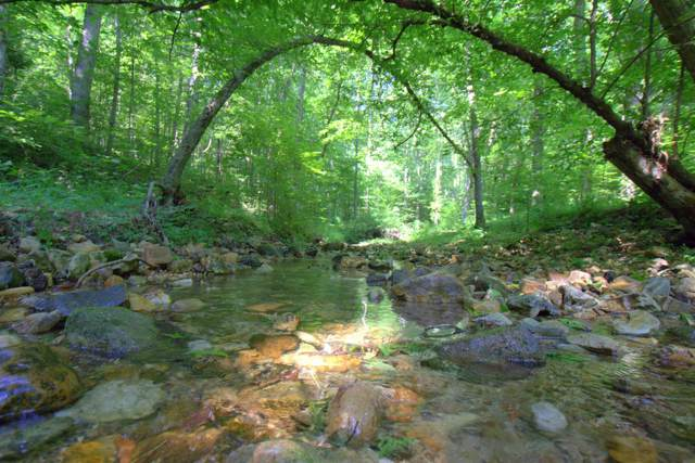 0 N Of Mill Creek Rd, Nunnelly, TN 37137 (MLS #RTC2058950) :: Team Wilson Real Estate Partners