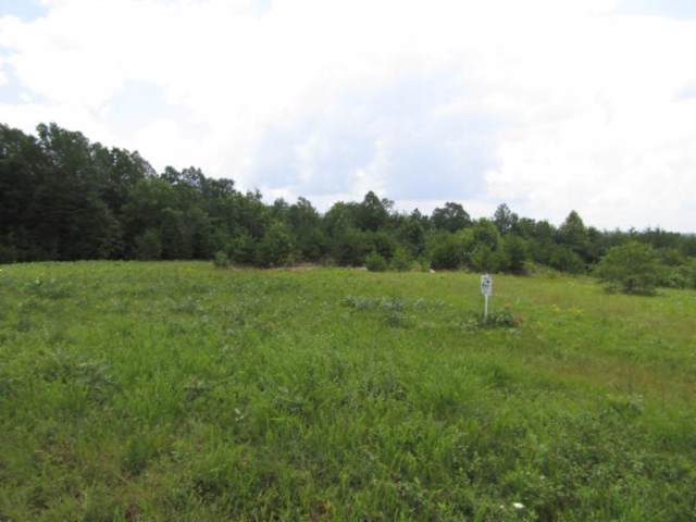 5 .01Ac Vista View Pkwy, Jamestown, TN 38556 (MLS #RTC2060603) :: REMAX Elite