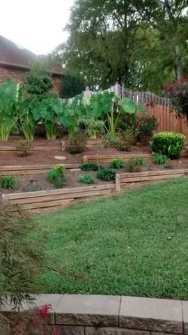 1300 Primrose Trl, Mount Juliet, TN 37122 (MLS #RTC2060918) :: Village Real Estate
