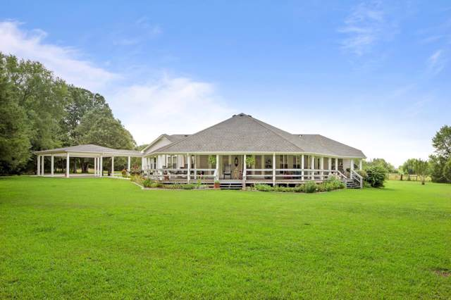 5620 Morgan Rd, Rockvale, TN 37153 (MLS #RTC2061349) :: The Kelton Group