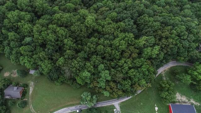 1 Lafever Ridge Rd, Silver Point, TN 38582 (MLS #RTC2061766) :: FYKES Realty Group