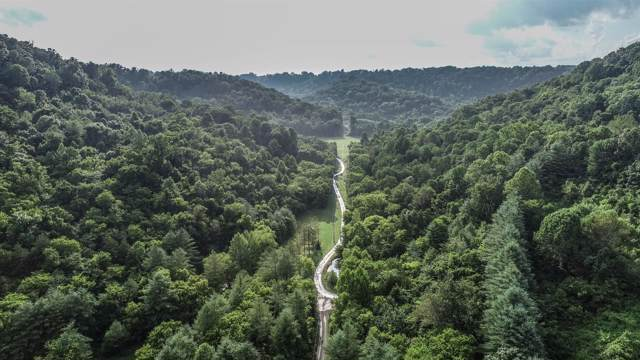 0 Lafever Ridge Rd, Silver Point, TN 38582 (MLS #RTC2061782) :: Fridrich & Clark Realty, LLC