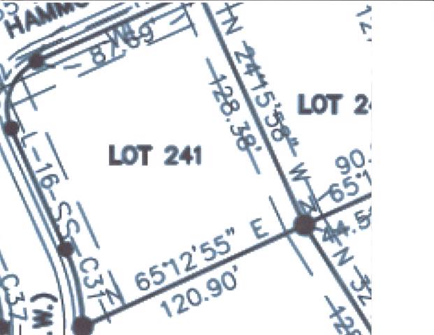 0 Hammock Rd. Lot 241, Winchester, TN 37398 (MLS #RTC2062092) :: REMAX Elite