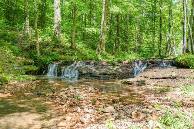 7248 Cavender Branch Rd, Lyles, TN 37098 (MLS #RTC2062209) :: REMAX Elite