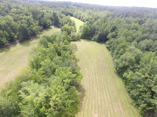 0 Upper Alsup Rd, Tennessee Ridge, TN 37178 (MLS #RTC2062731) :: The Kelton Group