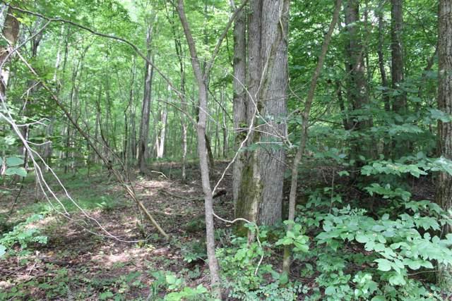 17 Patricia Cir, Indian Mound, TN 37079 (MLS #RTC2063675) :: REMAX Elite