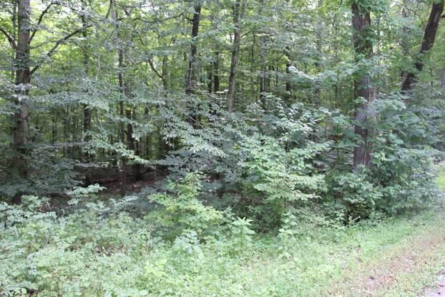 16 Patricia Cir, Indian Mound, TN 37079 (MLS #RTC2063720) :: REMAX Elite