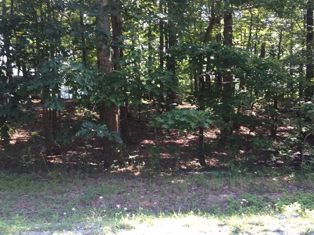 15 Ridge Cliff Dr, Monteagle, TN 37356 (MLS #RTC2065928) :: REMAX Elite