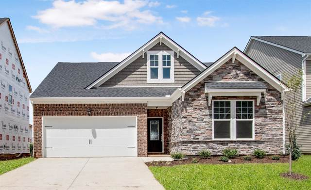 429 Nightcap Lane ( Lot 172), Murfreesboro, TN 37129 (MLS #RTC2067264) :: Fridrich & Clark Realty, LLC